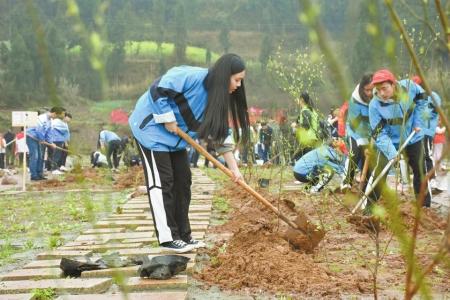 植树节 南充200多名学生种绿